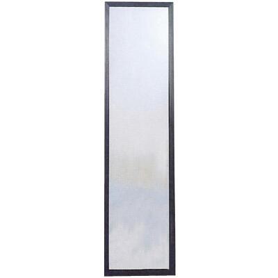 Home Decor Innovations Suave 13 In. x 49 In. Black Plastic Door Mirror