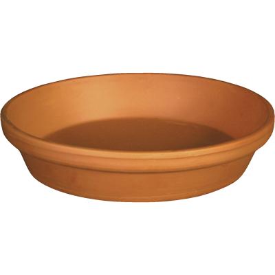Ceramo 8 In. Terracotta Clay Standard Flower Pot Saucer